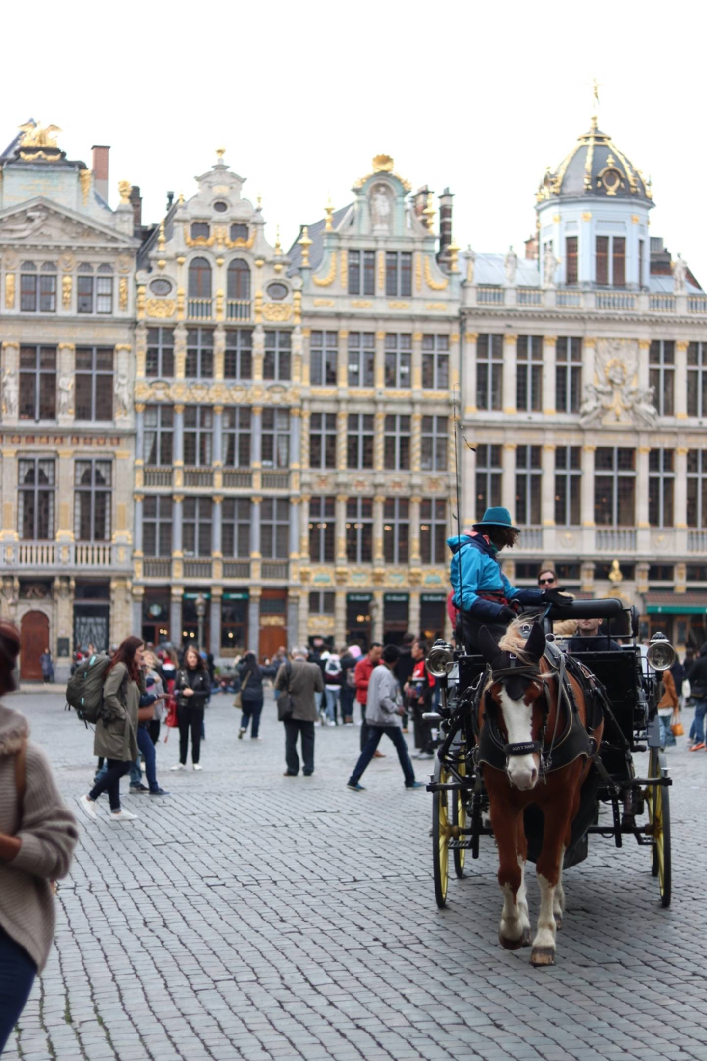 Horse-drawn carriage on the grande place (Grote Markt)