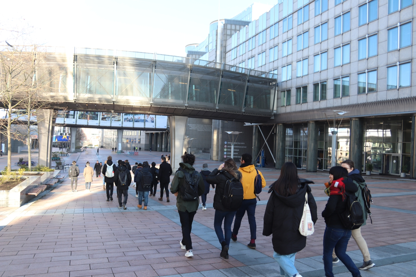 Back view of a group of students walking.